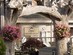 Kingfisher Oceanside Resort & Spa