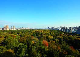 ザ リッツ カールトン ニューヨーク セントラルパーク 写真