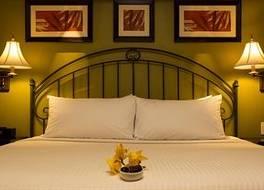 Kapok Hotel 写真