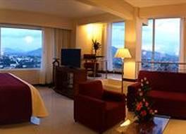 Hotel Fortin Plaza 写真