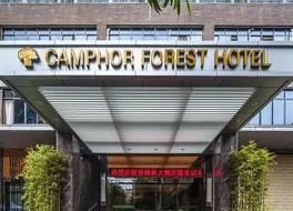 Camphor Forest Hotel 写真