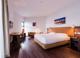 Hotel Vip Executive Tete 写真