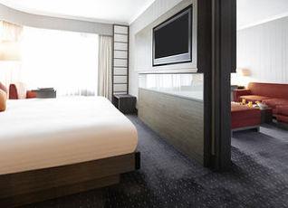 ノボテル ネーザン ロード カオルーン ホテル 写真