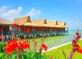 ビンタンアグロビーチリゾートアンドスパ 写真