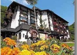 Moselromantik Hotel Weissmuhle
