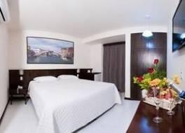 アグアス ド イグアク ホテル セントロ