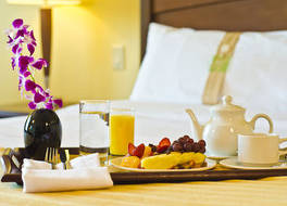 Holiday Inn Panama Canal 写真
