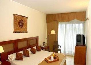 ホテル ライセス エストゥリオン 写真