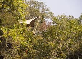 ムカンビ サファリ ロッジ - オール インクルーシブ 写真
