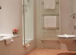 ベストウエスタン プラス ホテル メテオール プラザ 写真