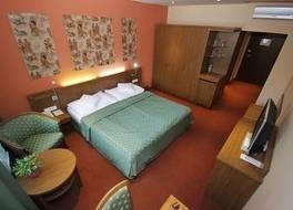 Hotel Max Inn 写真