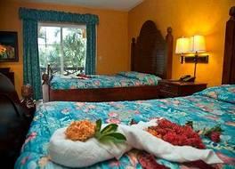 ホテル パルマ レアル - オールインクルーシブ 写真