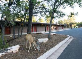 Yavapai Lodge - Inside the Park