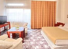 ホテル スラビジャ 写真