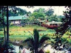 セピロック ジャングル リゾート 写真