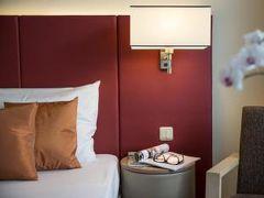 オーストリア トレンド ホテル シラーパーク リンツ 写真