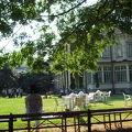 1999年に重要文化財に登録。2003年4月から一般公開が開始された都立旧岩崎邸庭園で100年の時空を体感した。