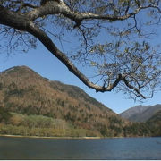 刈込湖 秘境ムード満点の湖