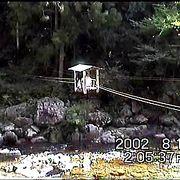 奈良県十津川村の<野猿>