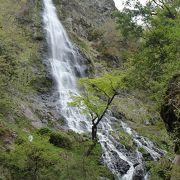日本の滝百選 落差98mの素晴らしい滝