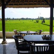 癒される田園風景@Tropical View Cafe