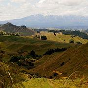 ピピリキ・ラエティヒ・ロードからもトンガリロ国立公園の三峰が見られます。