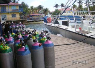 ディビ フラミンゴ ビーチ リゾート&カジノ 写真