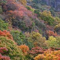 寒霞渓渓谷 写真