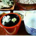 写真:會津野 茂三郎