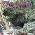写真:バット ケーブ (コウモリ洞窟)