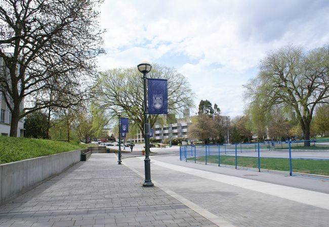 ブリティッシュ コロンビア大学 (UBC)