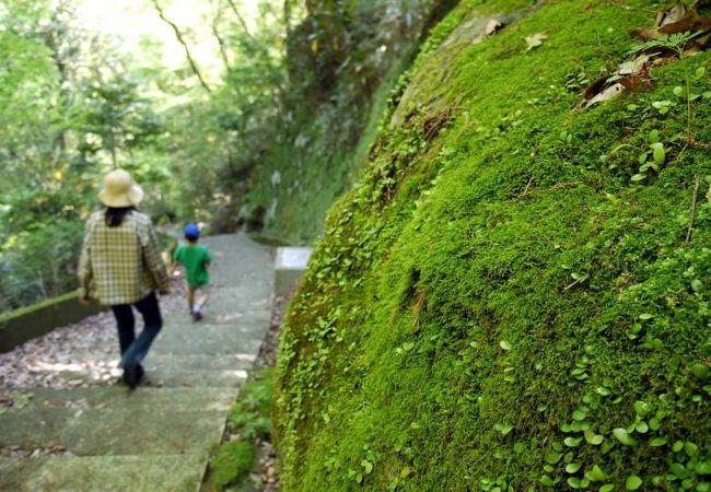 早川(堂ヶ島)渓谷遊歩道
