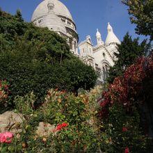 サクレクール寺院の脇には最後の赤いバラが咲いています