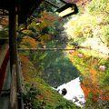 夏は涼を、秋は紅葉を、川床席で満喫♪