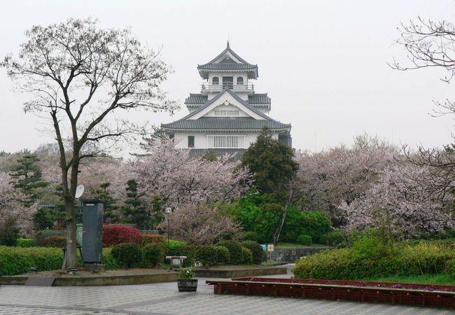 市立長浜城歴史博物館周辺の光景