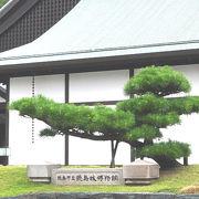 徳島城の歴史が学べる