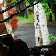 薪ストーブの薪が積んでありました。冬は雪に閉ざされるとの事