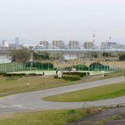 淀川の河川敷に20箇所の施設広場がある淀川河川公園(よどがわかせんこうえん)