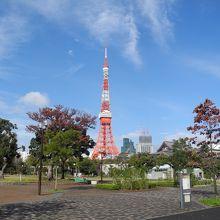 浜松町に来たら、東京タワーですね。