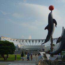 博多湾を眺めながらのショー
