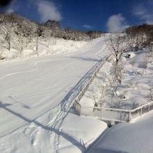 ここ数日降雪が続いていたのでコンディションは最高です