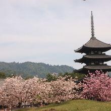 興福寺五重塔