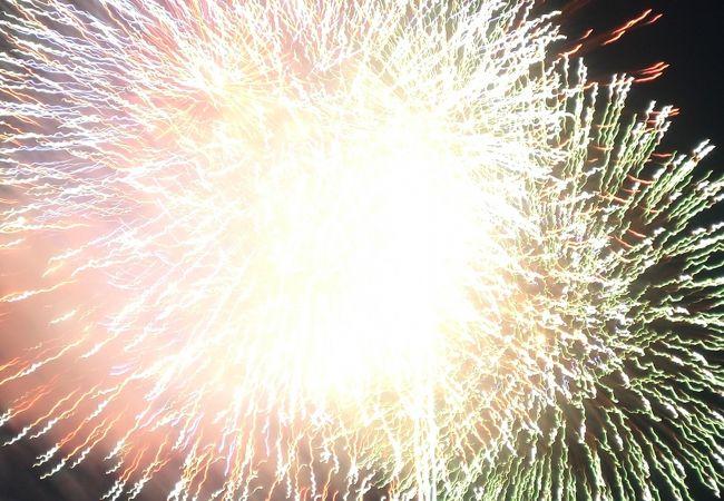 全国花火名人選抜競技大会 ふくろい遠州の花火