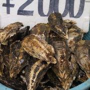 【海の駅しおじ】日生の牡蠣を食べつくせ!
