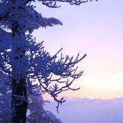 冬の夜明け・・・樹氷に包まれて!!