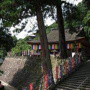 初めて訪れる人は山岳寺院のような雰囲気にびっくりするでしょう