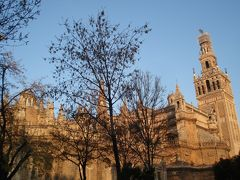 カテドラルとヒラルダの塔