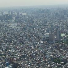 東京が一望