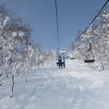 緩斜面、中斜面が多く、ロングクルージングが気持ちいいスキー場