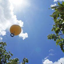 アンコールワット 気球